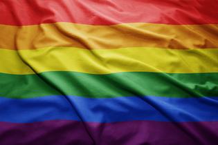 הורות חד-מינית - מה מרכיב משפחות גאות?