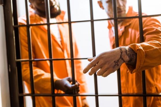 """המדינה תפצה אסיר עולם באלפי שקלים על מניעת גישה לאתר """"תקדין"""", צילום: istock"""