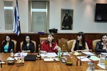 ועדת השרים לקידום מעמד האישה   צילום: יואב דודקביץ
