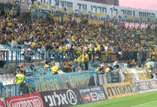 צילום: yellow up