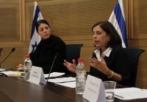 השופטת מיכל אגמון-גונן בדיון בכנסת עם חברת הכנסת מירב מיכאלי. צילום: עמותת ידיד