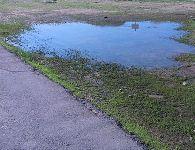 שלולית ליד הכביש שנוצרה מימי גשמים