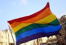כיתוב: דגל הגאווה