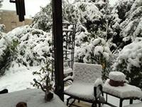 שלג באזור ירושלים. צילום: שירלי קורן