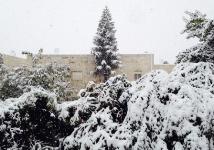 שלג בירושלים, 2013. צילום: עדי קורן